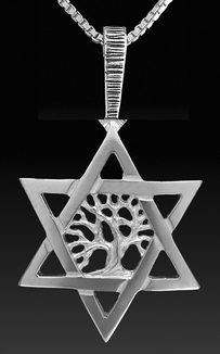 Silver Star David and Tree of Life Pendant / charm.